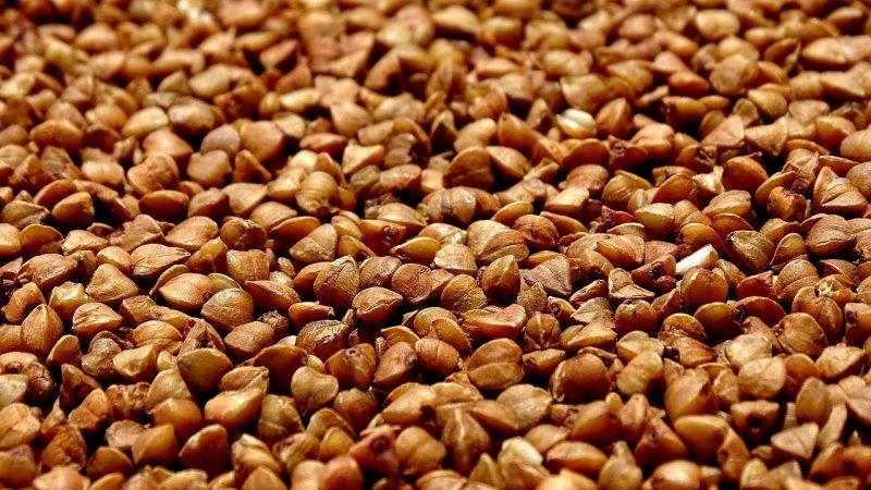 graines de sarrasin bio