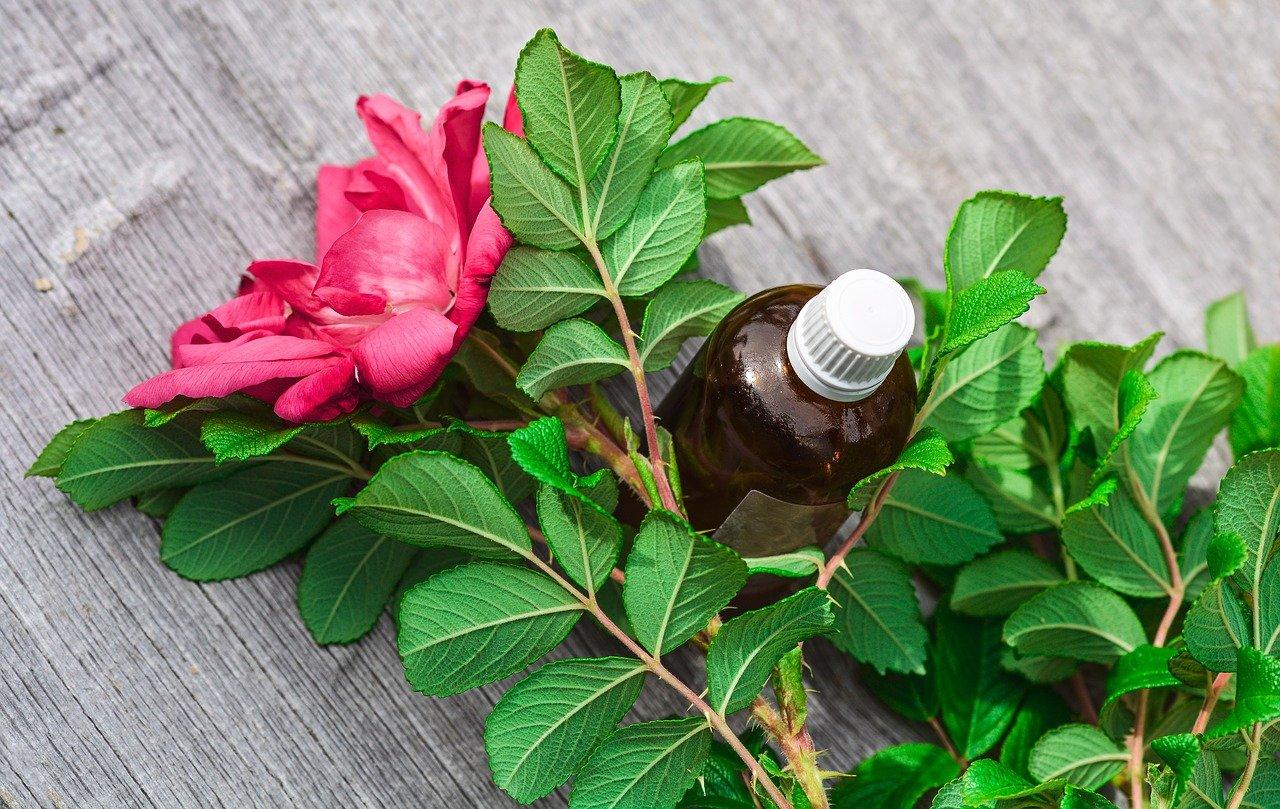 Hemorroides internes et traitement naturel