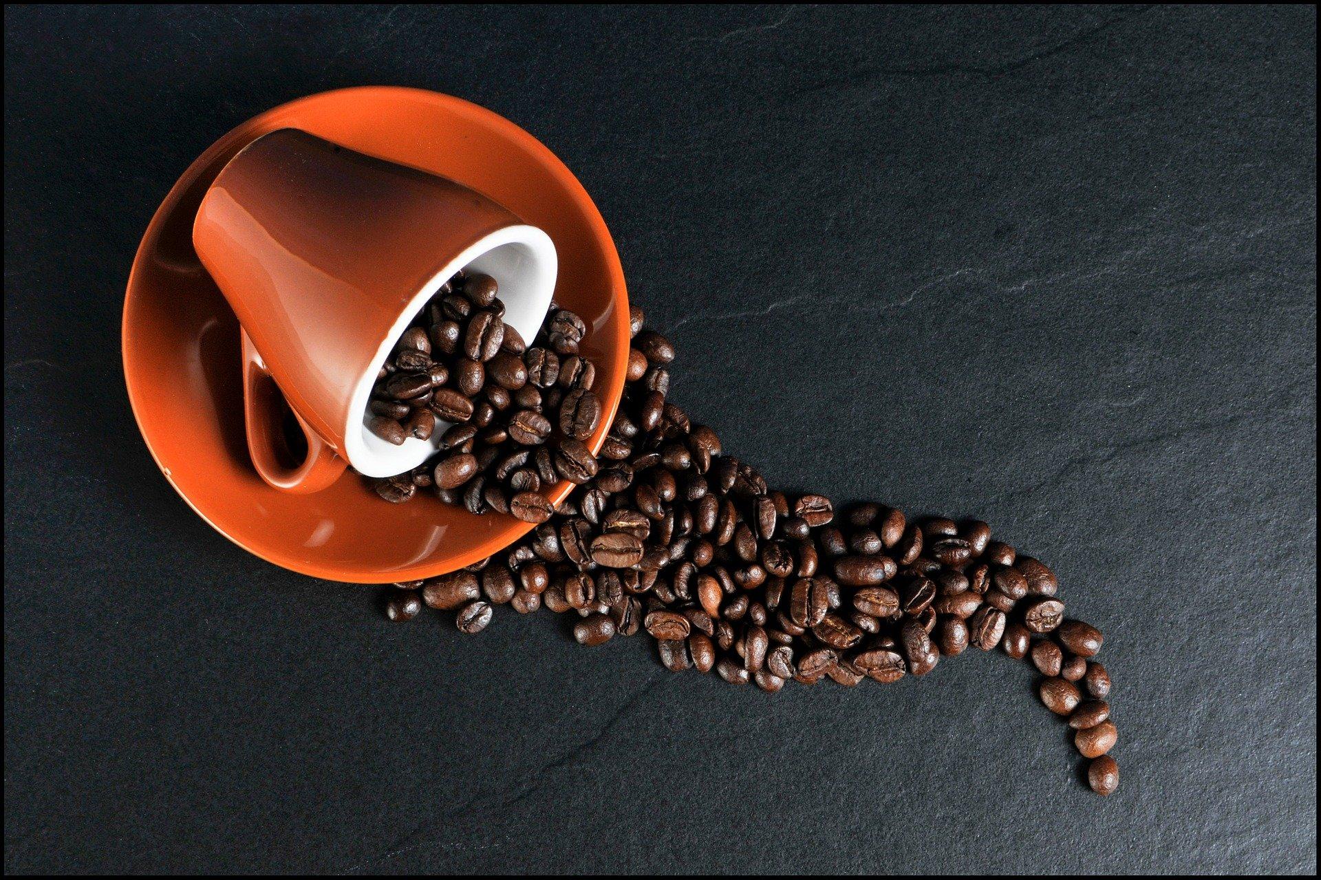 Le café bio : pourquoi le choisir ?