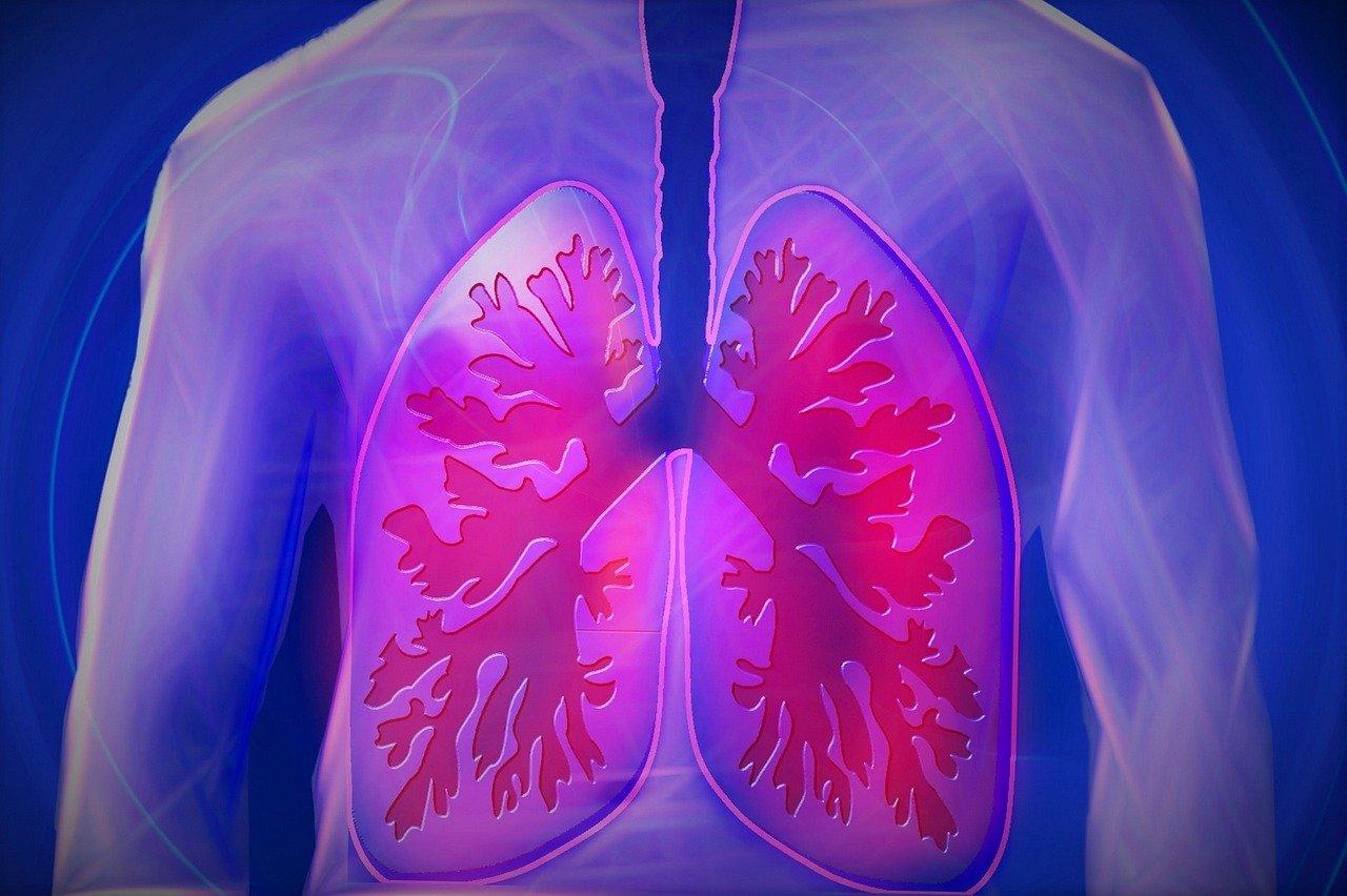 Les maladies inflammatoires chroniques intestinales