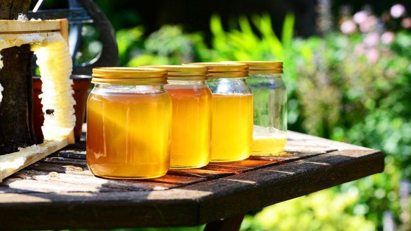 miel bio gellules ampoules